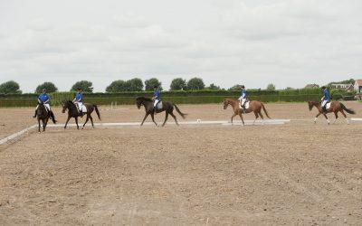 Paardenlessen